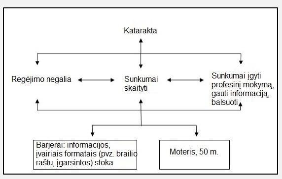 Individualaus TFK modelio taikymo pavyzdžiai (Šaltinis: Pasaulio sveikatos organizacija, PSO).